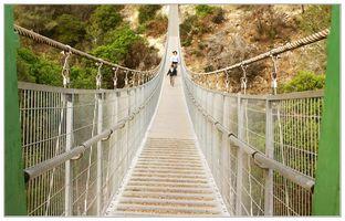 навесной мост в Нешере